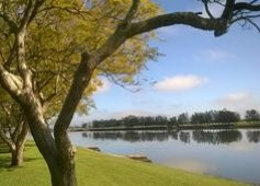 Picture of beautiful river in the Hunter Valley